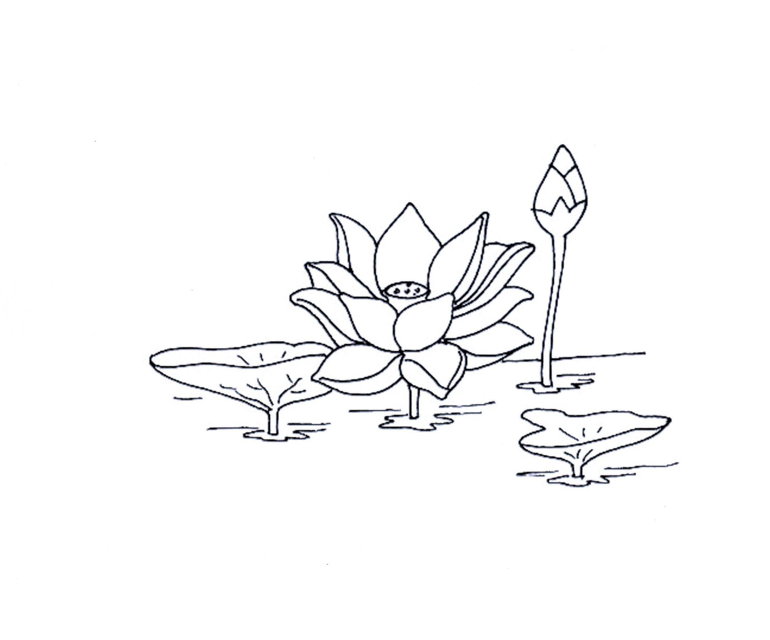 Le coin des enfants dessins - Photo de fleur a dessiner ...