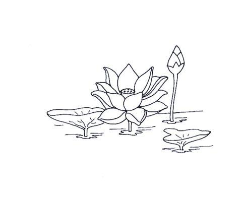 Coloriage Fleur Arum.Le Coin Des Enfants Dessins